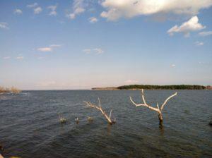 Walleye Fishing Guide Devils Lake North Dakota