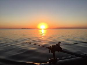 North Dakota Fishing Guide Walleye